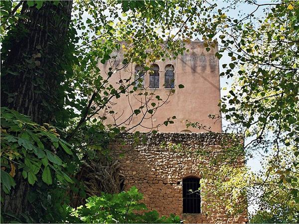 memorial monastere arbre